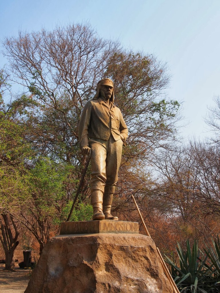 Discovery by Dr Livingstone