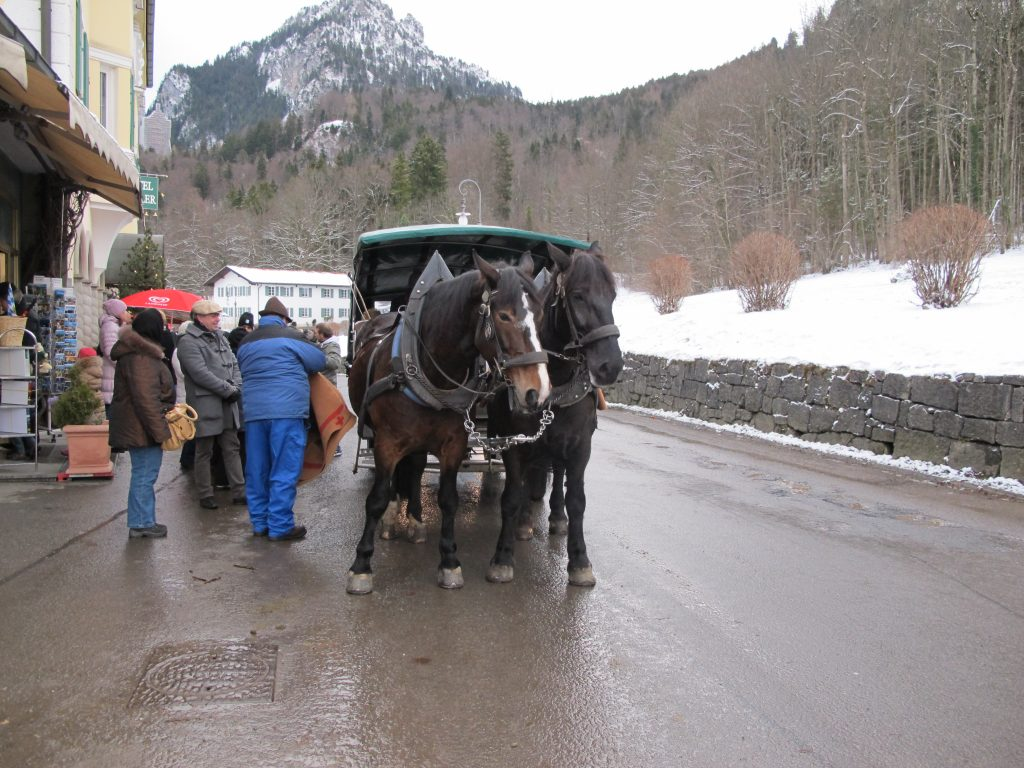 Horse carriage, for that fairytale castle visit.