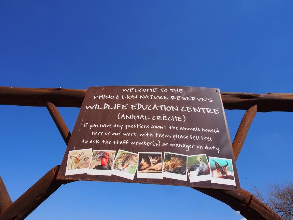 Next we visit the education center where there are young animals and recuperating injured animals