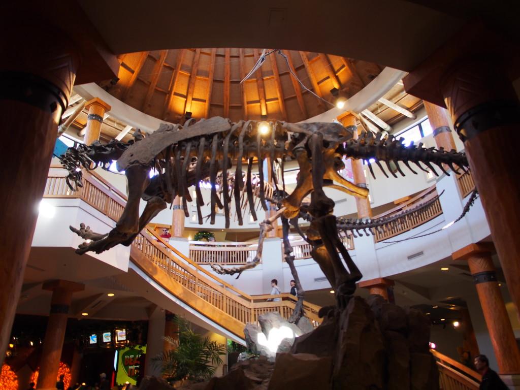 Dino skeleton replica.