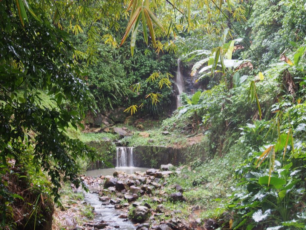 Stream near the volcano.