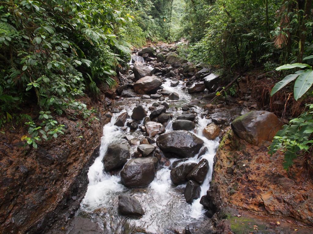 Clear gushing water streams.