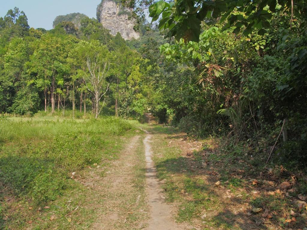 Dirt road towards the jungle towards Tonsai beach.