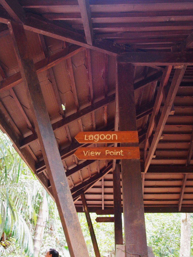 Real directions to the viewpoint.
