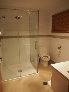 Toilet with standing shower.