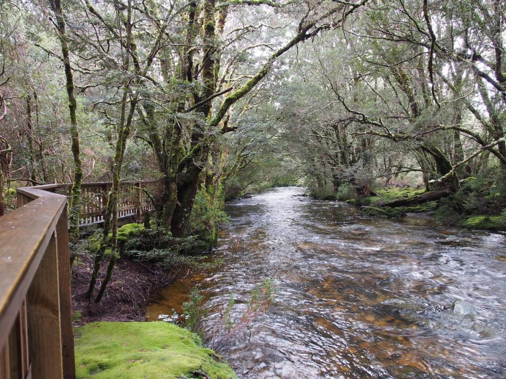 Walking alongside a stream.