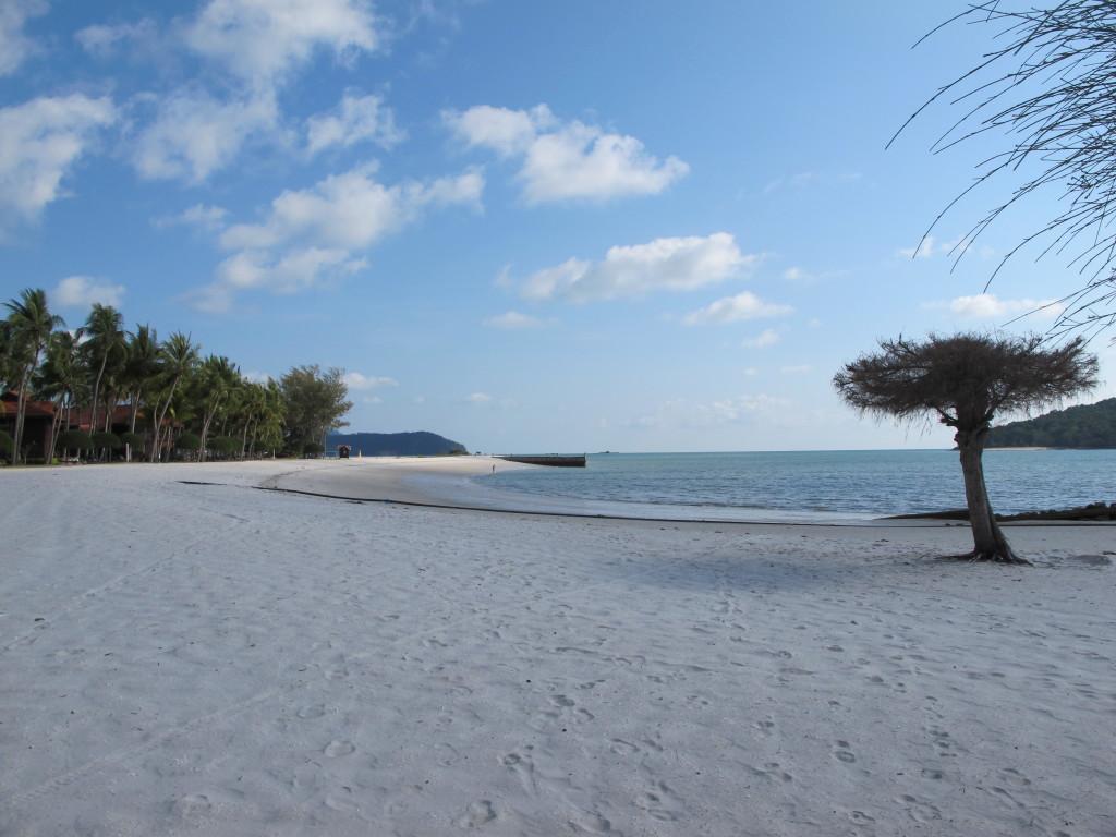 Beach view.