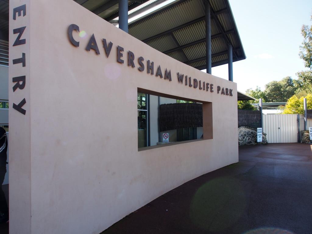 Caversham Wildlife Park.