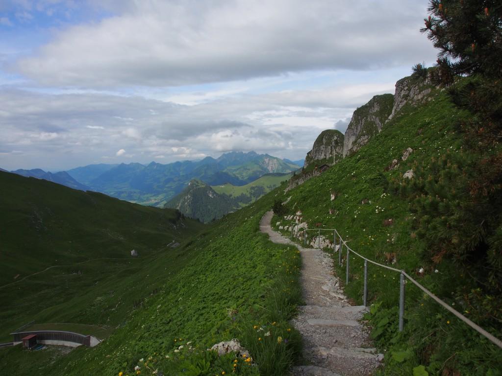 Pathway to the Alphine Gardens.