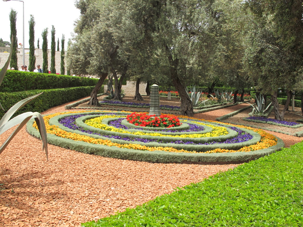 Colourful flowers planted in circles.