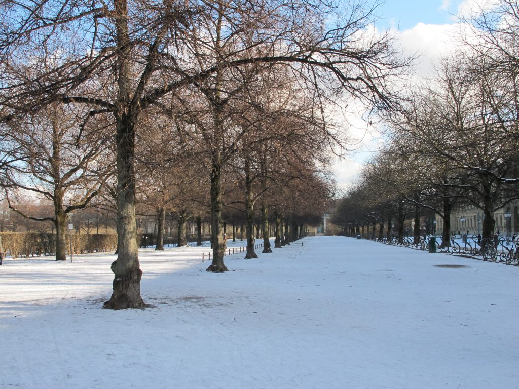 Park on a winter's day.