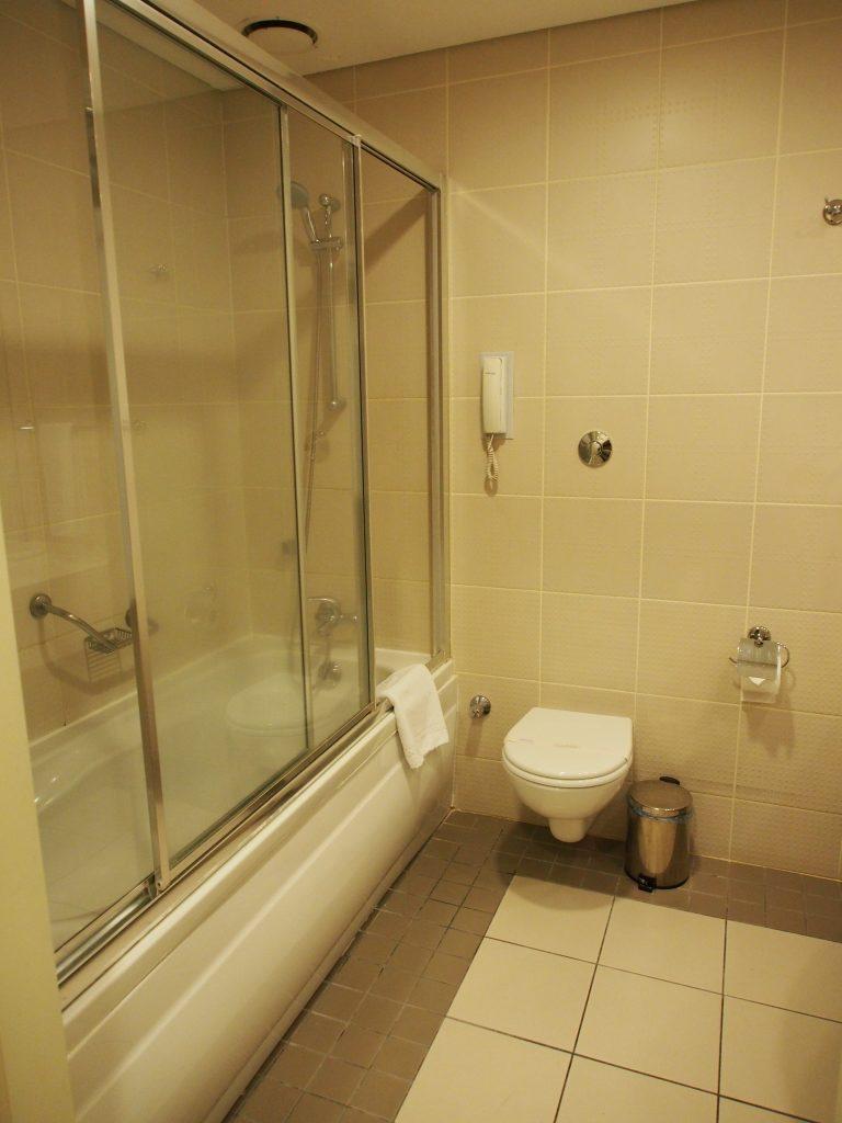 Bathtub in the toilet.