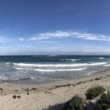 Kangaroo Island 2017 Day 13 – Raptor Domain and Seal bay